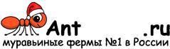 Муравьиные фермы AntFarms.ru - Челябинск